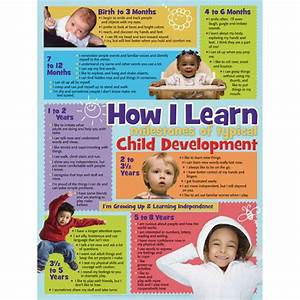 Learning Theories Chart Baby Stages Of Development Child Development Stages