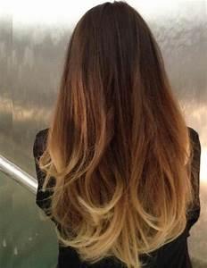 Ombré Hair Blond Foncé : tous les ombr s hair les plus tendances ~ Nature-et-papiers.com Idées de Décoration