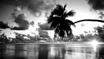 Sunset Pretty Backgrounds Wallpapersafari Wallpapers Screensavers Palm