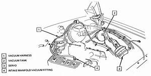 6 0 Powerstroke Injector Wiring Diagram  6  Free Engine Image For User Manual Download
