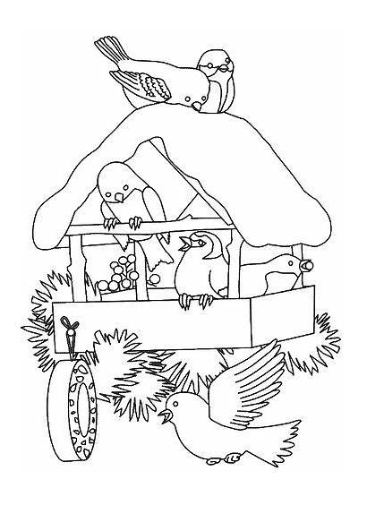 Coloring Pages Winter Birdhouse Bird Flickr Christmas