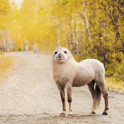 Digital Collage Artist Creates Weird And Wonderful Animal