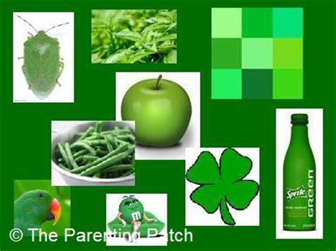 three activities for preschoolers for the color green 778   2012 07 21 Three Fun Activities for Preschoolers for the Color Green