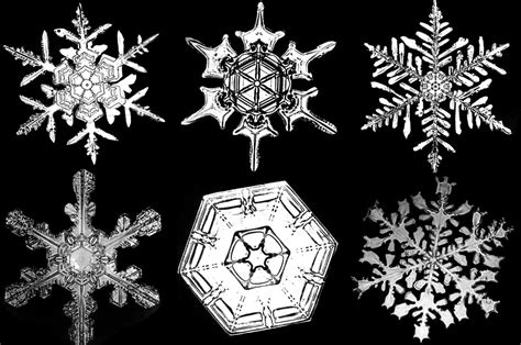 taking pictures of snowflakes 171 blog archive 171 yellowpop