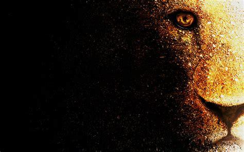 Lion Wallpaper Desktop By Mu6 On Deviantart