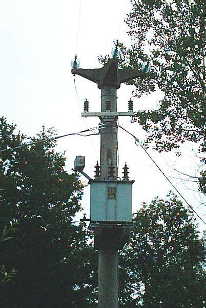 Tralicci Media Tensione - potatura alberi su linee di alta tensione giardinaggio e