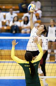 No. 10 women's volleyball set for Stanford and Cal   Daily ...
