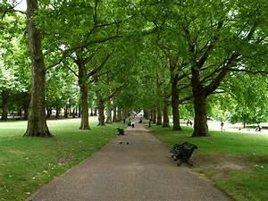 Parks In London : green park c b wentworth ~ Yasmunasinghe.com Haus und Dekorationen