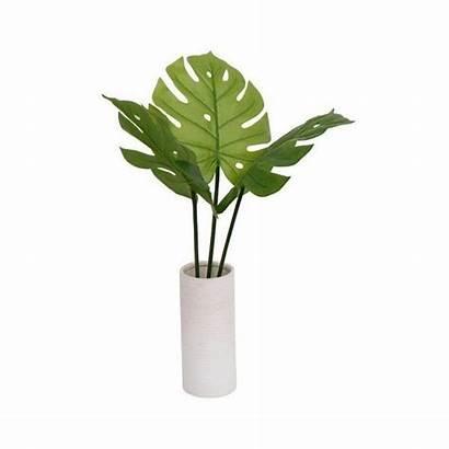 Vase Plant Plants Banana Artificial Tall Polyvore