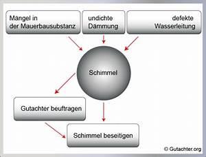 Schwarzer Schimmel In Der Wohnung : schimmel im wohnzimmer entfernen ~ Michelbontemps.com Haus und Dekorationen
