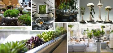 large kitchens design ideas indoor gardening ideas to beautify your space