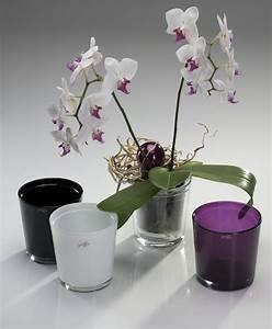 Orchideen übertopf Glas : blumentopf bertopf orchid orchideentopf glas farbig lila ebay ~ Eleganceandgraceweddings.com Haus und Dekorationen