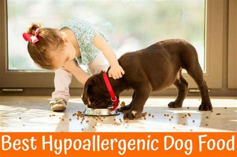 hypoallergenic dog food review    bones