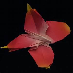 Schmetterling Basteln Papier : schmetterling bastelvorlagen ~ Lizthompson.info Haus und Dekorationen