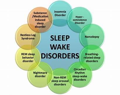 Sleep Disorders Narcolepsy Disorder Sleeping Insomnia Wake