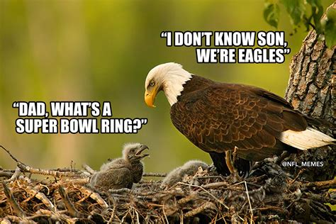 today  gather   rip   greatest philadelphia eagles  ring memes pics