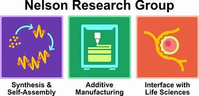 Stimuli Responsive Materials Research Nelson Polymer Chemistry