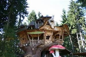 Baumhaus Bauen Lassen : baumhaus im wald bauen beachtenswertes ~ Yasmunasinghe.com Haus und Dekorationen
