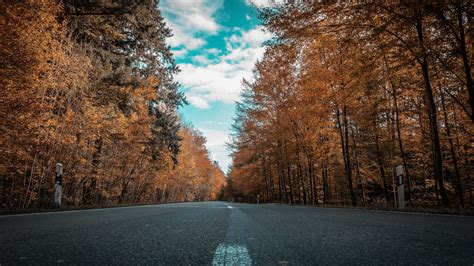Autumn 4k Uhd Wallpapers by Wallpaper Autumn Road Forest Trees 3840x2160 Uhd 4k