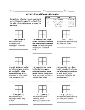 punnett square generator worksheet by haney science