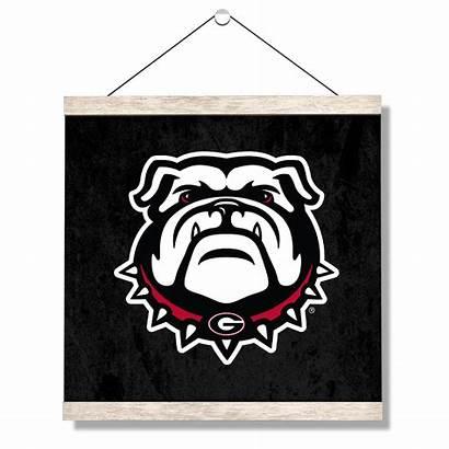Georgia Bulldog Bulldogs Canvas Hanging College Uga