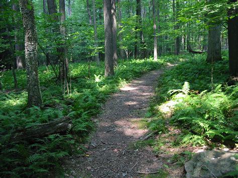 Blog Nature Trail Templates by Favorite Walks In Ashland Ashland Oregon Localsguide