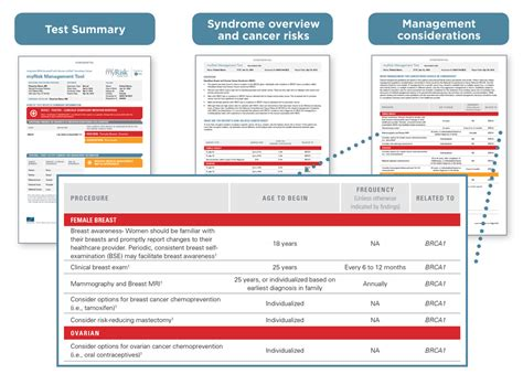 resume screening software risk assessment tool template 28