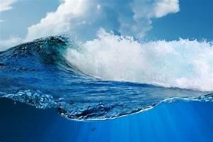 Scientists Locate Link Between Ocean Microbes And