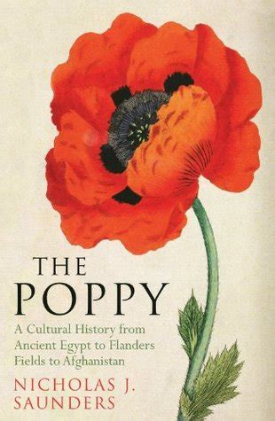 poppy  history  conflict loss remembrance
