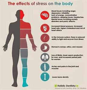 Stress  What It Does To Your Body