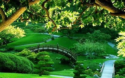 Garden Jooinn Nature