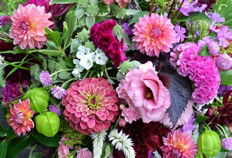 wedding flowers  springwell zinnia  dahlia