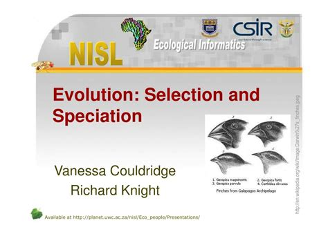 Ppt  Evolution Selection And Speciation Powerpoint Presentation Id209710