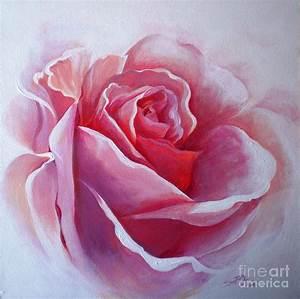 English Rose Painting by Sandra Phryce-Jones