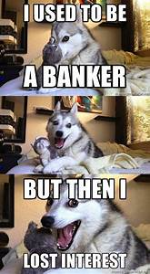 45 best Pun Dog images on Pinterest | Corny jokes, Funny ...