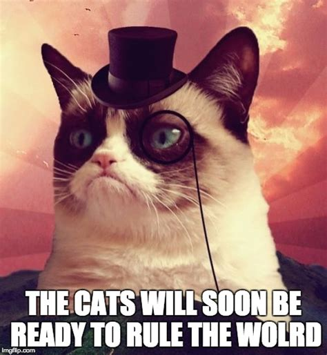 See more ideas about cats, cowboy hats, cute animals. Grumpy Cat Top Hat Meme - Imgflip