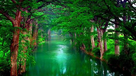 Green Nature Trees And Lake 187  Nature Hd Desktop Wallpaper
