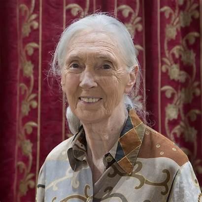 Goodall Jane Morris Dame Dr Dbe Primatologist