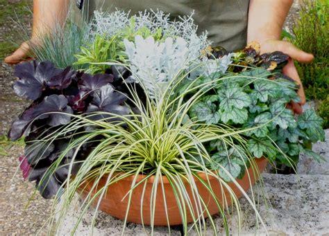 50er jahre küche schale bepflanzen sommer schale bepflanzen sommer anleitung fr sommer selber