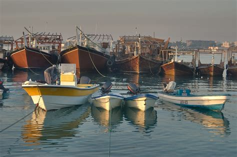 Fishing Boat Qatar by Photo 825 14 Fishing Boats At Morning In Dhow Harbor Of