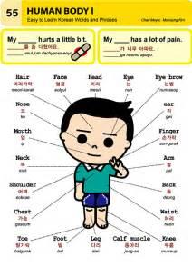 Korean Words Body Parts