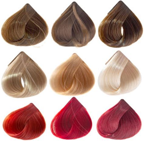 Different Types Of Hair Color by Tips On Recoloring Hair When Hair Dyeing Went Wrong