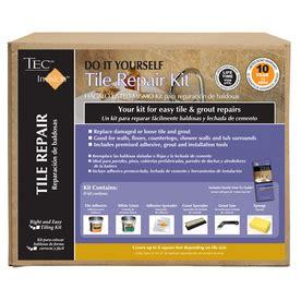 shop tec invision 5 lb white premixed tile repair mortar