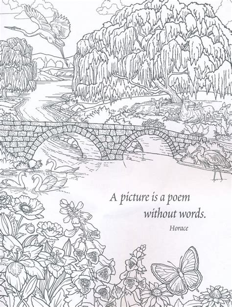 coloring pages for adults nature 125 best color therapy quotes sayings and words
