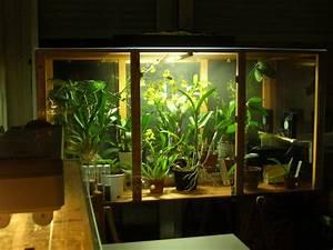 Serre D Intérieur : r ves d 39 orchid es fabrication d 39 une serre d 39 interieur pour orchid es ~ Preciouscoupons.com Idées de Décoration