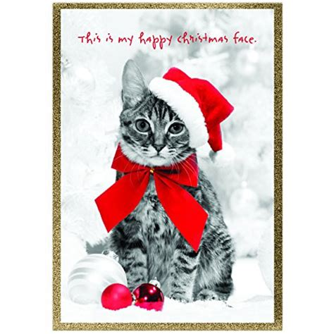 Gift cards on amazon are special top up vouchers that can be exchanged on the amazon website for items. Graphique Holiday Cats Assorted Boxed Christmas Cards - 20 ...