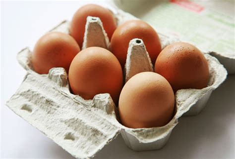 size of refrigerator amazing eggs recipes for eggs 6 ways in pictures