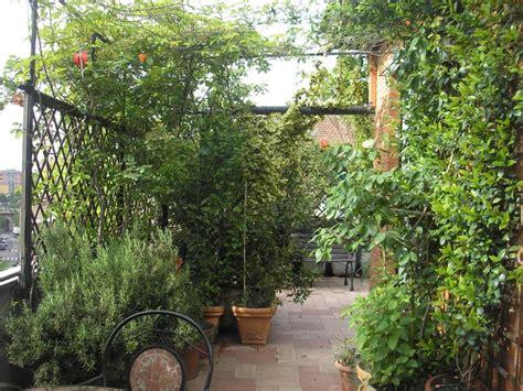 terrazzo in fiore come abbellire un terrazzo con piante missionmeltdown
