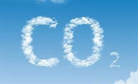 10 Facts about Carbon Dioxide   Fact File