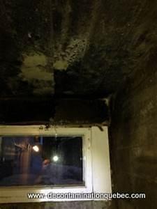 moisissures decontamination quebec inc With probl me de moisissure dans une chambre